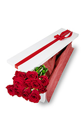12 Long Stem Roses Presentation Box
